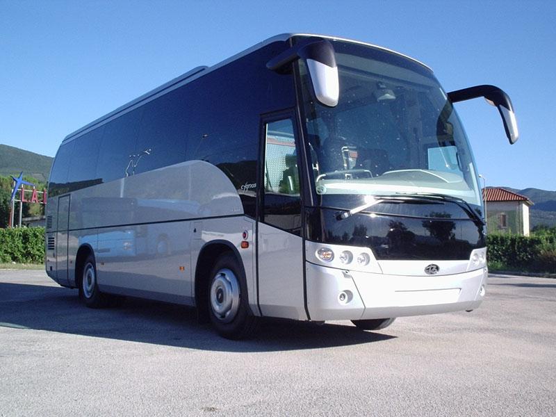 Driver Bus GT – 45 posti